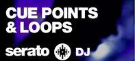Serato DJチュートリアル:CUEポイントとループ